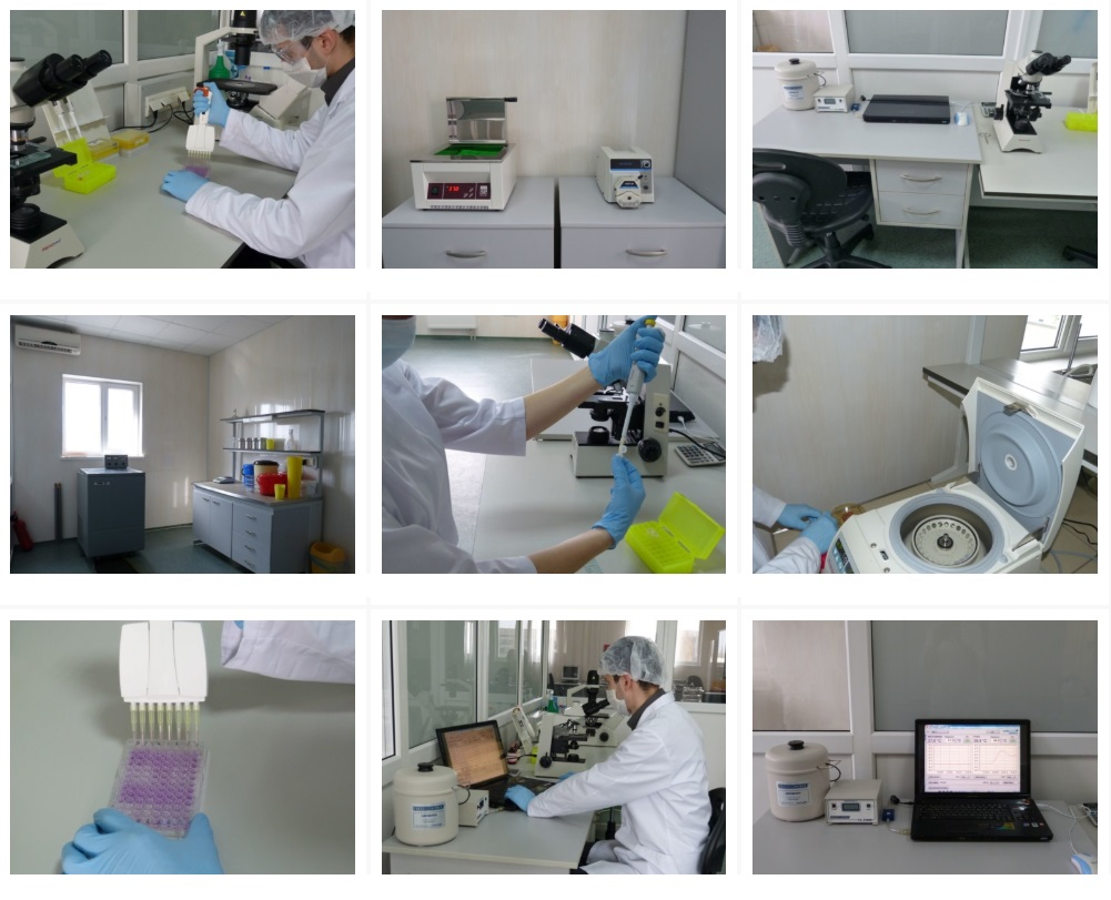 stem cells ukraine