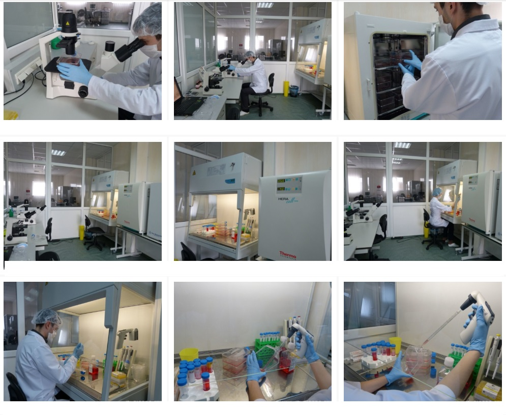 stem cells clinic ukraine